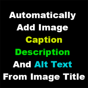 Automatically Add Description, Caption And Alt Text From Image Title