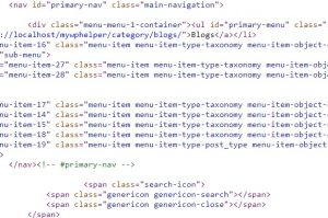 Wp_nav_menu() Function: How to Remove Class and IDs
